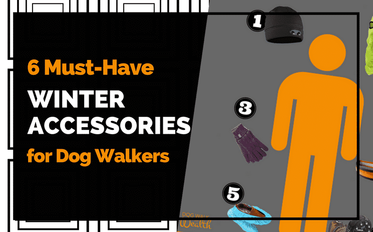 6 Must-Have Winter Accessories For Dog Walkers